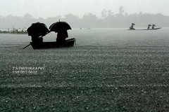 Million drops of life (tanvir_shafi (back to wide-angle-wishing for Ultra) Tags: life people storm umbrella canon eos boat place lowlands swamp usm 70300mm ef tropicalstorm rainyseason haor smallboats tanvir shafi peoplewithumbrella bangladeh rebelxs lifesytle 70300mmf456isusm sunamganj 1000d rainyseasonofbangladesh sunamganjhaor bangladeshinrainyseason