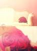 ( Boda - Wedding ) (Rawan Mohammad ..) Tags: flowers red flora nikon photographer photos mohammad rn محمد rawan افضل نيكون رن روان rnona رنونا المصوره ٢٠١١
