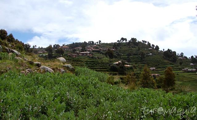 Puno - Peru - Image00007