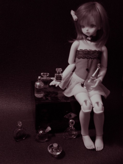 Tatiana, petite Lady bee 6217894389_2013ba615d_z