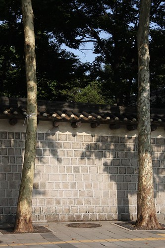 徳寿宮の朝 / Scenery of the morning,Deoksugung