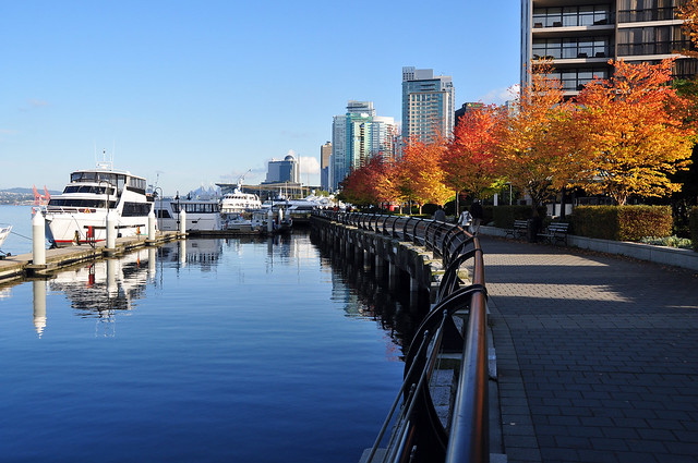 Fall in Coal Harbour