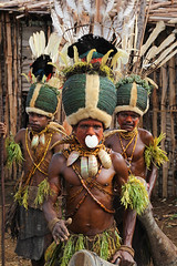 Kalam culture show in Simbai - PNG (Bertrand Linet) Tags: tribal png tribe papuanewguinea papua ethnic headdresses papuan papouasie papouasienouvelleguinee simbai bertrandlinet kalamculture kalamtribe simbaipapua simbaipng