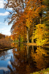 Autumn Colors (BraCom (Bram)) Tags: autumn trees fall nature water netherlands forest reflections gold pond bomen woods herfst nederland natuur bos apeldoorn vijver goud spiegeling kroondomein treesdiestandingup bracom mygearandme mygearandmepremium mygearandmebronze mygearandmesilver mygearandmegold mygearandmeplatinum mygearandmediamond natureskingdom