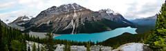 Peyto Lake (thomas zasso) Tags: park panorama lake snow canada mountains rockies panoramic national alberta banff peyto