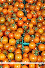 Orange Cherry Tomatoes (o-boy) Tags: red food orange cooking yellow fruit tomato cherry recipe salad vegan healthy raw market many small vegetable supermarket fresh health greenhouse vegetarian produce growing farmer organic diet grocery edible ripe supply nutrition ingredient vitamin