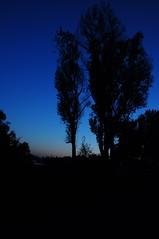 Kralingse Plas Rotterdam (johndynaudio) Tags: sunset ed nikon nikkor f28 1735 kralingseplas 1735f28ed