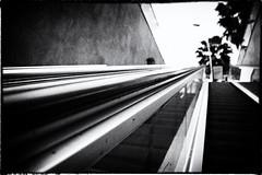 No me mir al pasar (Enrique Moya Ortiz) Tags: barcelona blackandwhite bw man blancoynegro strange stairs underground subway metro steps bn hombre escaleras mistery misterio extrao