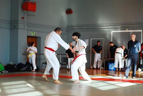 6299408171 0bf237616c London & Hove Shodokan Aikido Festival 2011