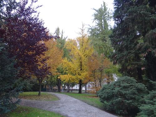 Varaždin park