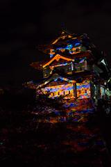 hasegawa の壁紙プレビュー