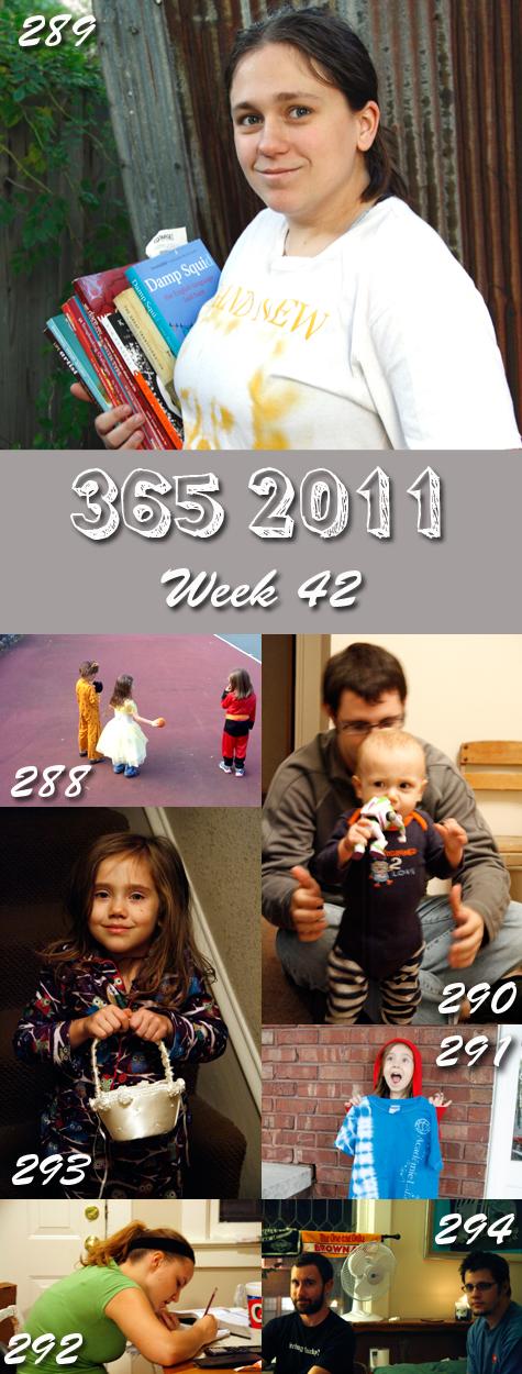 365 2011 Week 42