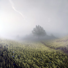 My field of dreams (E Dina PhotoArt) Tags: tree green nature field misty freedom bokeh hill memories free silence dreams edina bestplaceonearth aliceinwonderland ourtime justimagine lonleytree idream fantasticnature innamoramento awardtree agorathefineartgallery