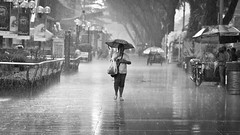 Must go shopping (Tristan del Castillo) Tags: road street blackandwhite bw wet rain weather umbrella bag mono nikon singapore candid auntie bad streetphotography 85mm orchard plastic nikkor 18 lightroom 18d afd f18afd