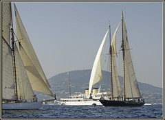 three golden girls (mhobl) Tags: regatta motoryacht sainttropez talitha moonbeamiii88 mariette21 marietteof191521 moonbeam88
