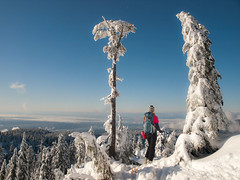 First Ski Day of the Season (Christopher J. Morley) Tags: trees mountain snow ski tree smile vancouver happy bc view north seymour lora TGAM:photodesk=winter2012