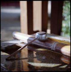 Tranquil Silence (Yoshikatsu Sato) Tags: reflection 6x6 film mediumformat tokyo shrine bokeh hasselblad planar omori proxar
