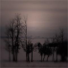 Winter (redux) (josefontheroad) Tags: alberta hwy37 absolutegoldenmasterpiece