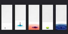 Water (Photofidelity) Tags: lighting color water drops nikon bowl liquid strobe foodcoloring offcameraflash multipleshots waterphotography nikond700 meghanherald photofidelity