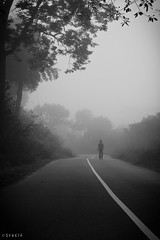 Alive (stalin.sm) Tags: mist kerala wayanad mistymorning vythri padinjarathara