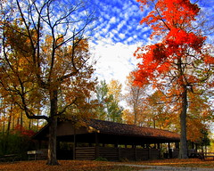 Henes Park (**Ms Judi**) Tags: autumn trees sky fallleaves cloud color tree fall beautiful beauty leaves clouds table midwest picnic branch michigan branches peaceful bluesky autumnleaves serene shelter autumncolor godsgift henespark msjudi judistevenson menonineemichigan judippc photographybymsjudi