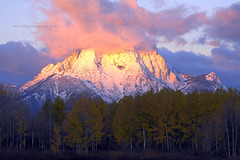 Mt. Moran at Sunrise (Deby Dixon) Tags: morning travel mountain snow color fall tourism nature clouds sunrise landscape outdoors nationalpark nikon adventure aspens wyoming tetons deby allrightsreserved oxbow freshsnow grandtetonnationalpark 2011 mtmoran debydixon debydixonphotography