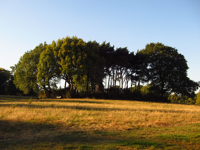 The Tumulus