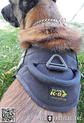 Elite-K9-Harness-01