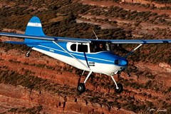 Cessna 170 (Champion Air Photos) Tags: cessna 170 airtoair c170