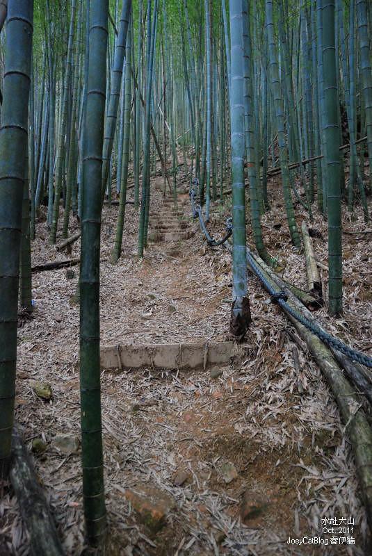 2011_1026水社大山DSC_2982