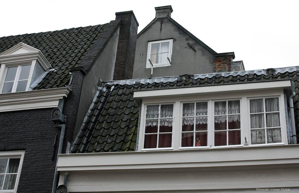Aperçu des toits des immeubles, avec des petites fenêtres à carreaux, et des rideaux, chose assez rare à Amsterdam.