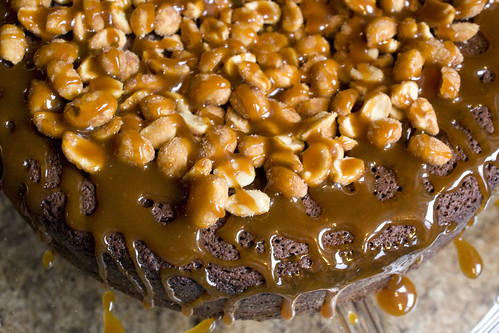 Talk about an indulgent birthday dessert Caramel Peanut-Topped Brownie Cake Recipe