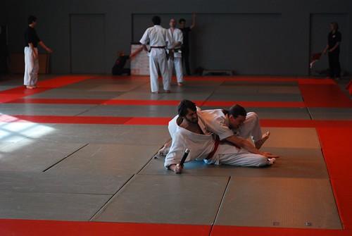 6299417845 d8b3cd305e London & Hove Shodokan Aikido Festival 2011