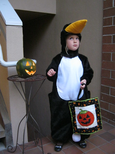 my little penguin