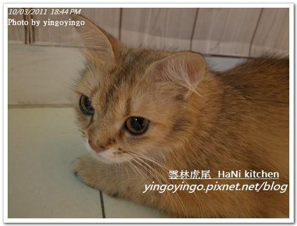 雲林虎尾_HaNi kitchen20111003_R0042570