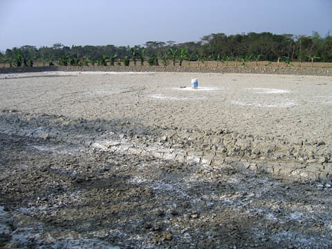 Drought in Bangladesh. Photo by WorldFish, 2008