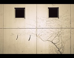 Crooked smile (bkiwik) Tags: city windows newzealand christchurch blackandwhite building smile architecture digital canon dead concrete blackwhite citylife engineering vine canterbury symmetry minimal taps nz southisland symmetrical dslr simple aotearoa minimalistic concretejungle simplistic crookedsmile deadvine rebates eos400d