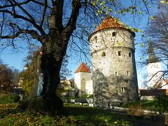 Kiek in the kok, Tallinn (Buffy_10) Tags: tallinn estonia hill baltic kok toompea kiek