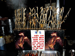 Street Food - Beijing, China (Joao Eduardo Figueiredo) Tags: china street gourmet food nikon coolpix p6000 lizards sea horses asia joao joão eduardo figueiredo joãoeduardofigueiredo