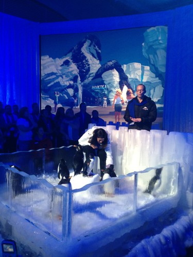 The world of Antarctica will be built at @SeaWorld with