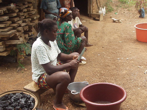 Woman cleaning fish, Cameroon. Photo by Randall Brummett, 2004