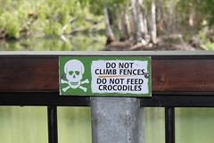 Croc Farm_39
