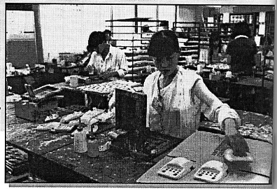 Workers at Apollo Toy Factory in Shenzhen. Toy workers are frequently exposed to toxic chemical such as solvents, paints, glues and vinyl.