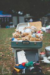 Suitcase of Teddy Bears - Newtown Festival