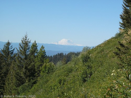 View froMt. Rainier from Teanaway Ridge, Okanogan-Wenatchee National Forest, Washington