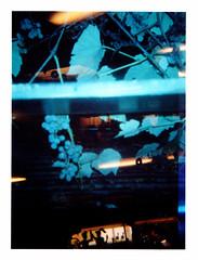 Return to the Scene of the Crime (Dead  Air) Tags: halloween silhouette portland restaurant holga cafe darkness flash stjohns diner lightleaks jukebox exposures allhallowseve blueflash halloweenstore coloredflash fakeplants pattieshomeplate