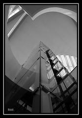 The Elevator (@noutyboy (Instagram)) Tags: november autumn bw white black holland fall netherlands monochrome architecture modern canon eos utrecht novembre cityhall herfst nederland thenetherlands opening zwart wit architectuur nieuwegein gemeentehuis 550 cityplaza 2011 nout 550d eos550d noutyboy