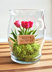 Mini Happy Birthday Tulip Terrarium in Recycled Glass (missmossgifts) Tags: orchid miniature etsy terrarium missmoss lunaclay fauxterrarium miniatureterrarium etsyterrarium