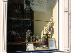 Proeflokaal Kat (indigo_jones) Tags: sun holland window netherlands sunshine shop cat spring kat warm utrecht nap nederland winkel lente rubens raam nieuwegracht horeca proeverij