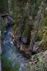 Johnston Canyon Area (Peter A Levey) Tags: geotagged banffnationalpark johnstoncanyon geo:lat=5125203063 geo:lon=11583783722
